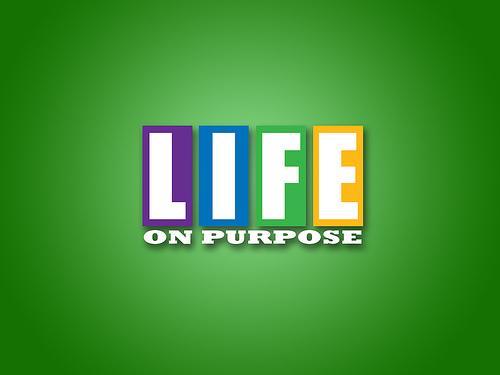 3373891_com_lifeonpurpose